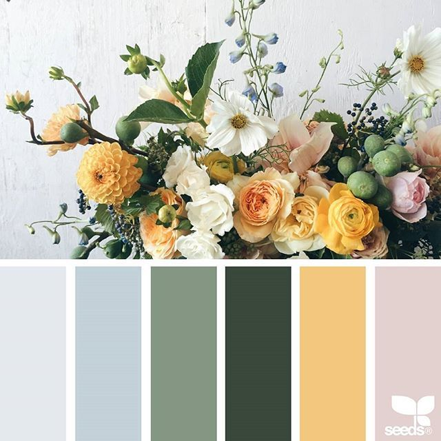 today's inspiration image for { flora palette } is by @natashakolenko ... thank you, Natasha, for another gorgeous #SeedsColor image share!
