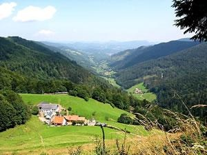 Les Vosges: hiking and a ferme-auberge