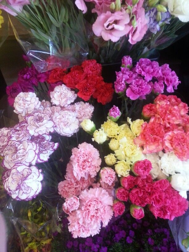 Fresh Sim Carnations in different colors, we just love fresh flowers