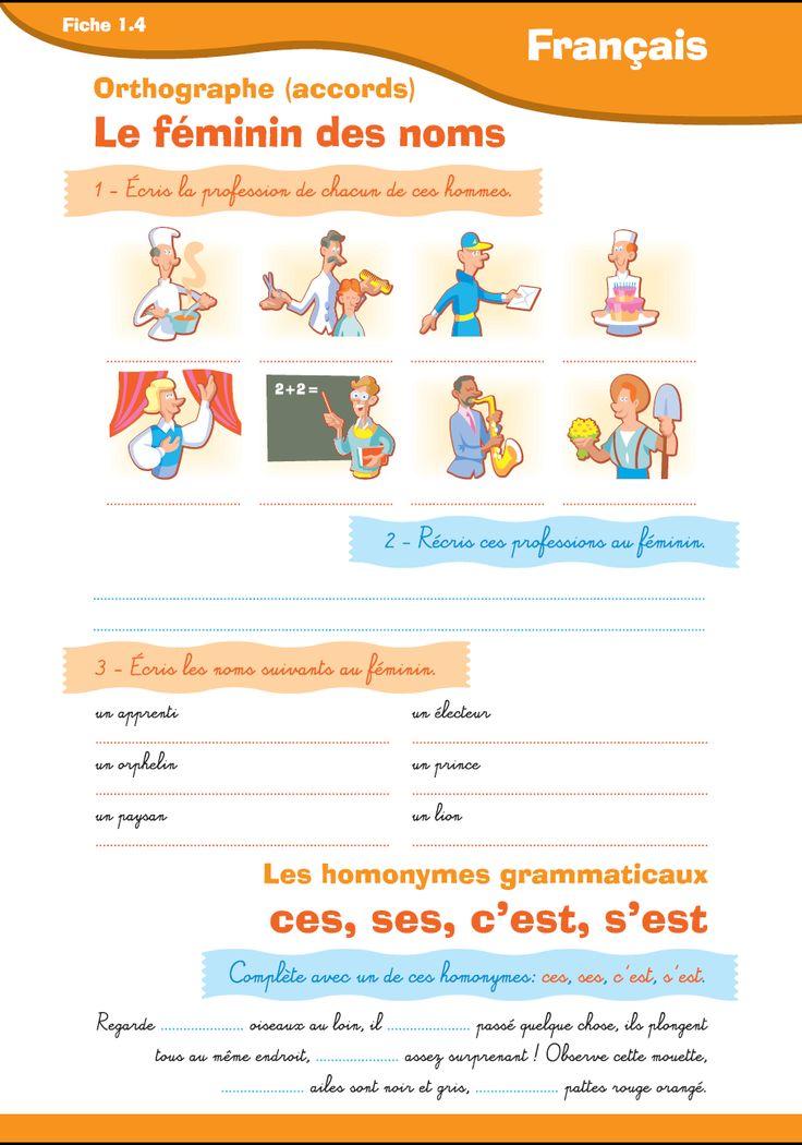 Orthographe : Le féminin des noms, exercices sur l'accord. Homophones c'est/s'est/ses/ces pour les niveaux CM 1 et CM 2. Fiche à imprimer