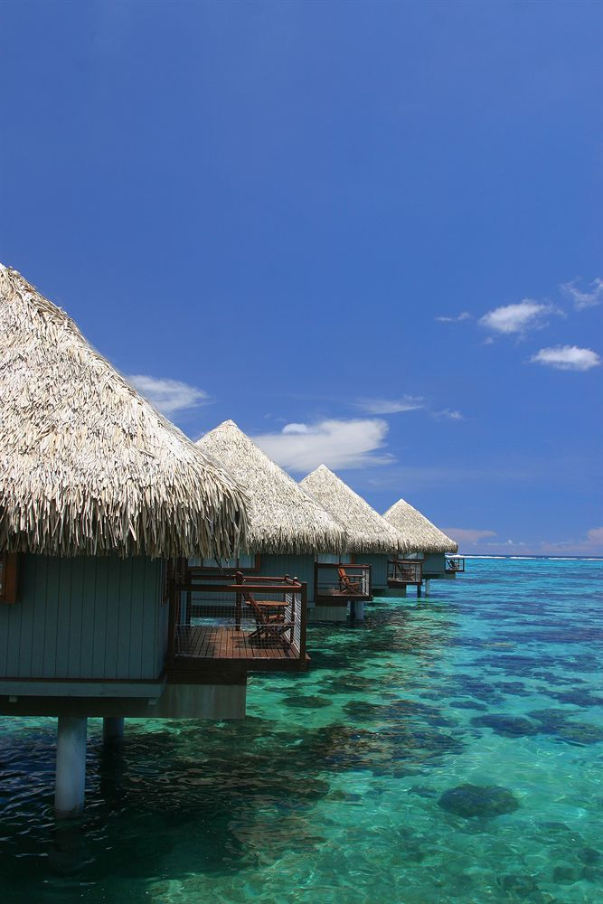 Le Meridien Tahiti - Hotels.com - Hotel rooms with reviews. Discounts and Deals on 85,000 hotels worldwide