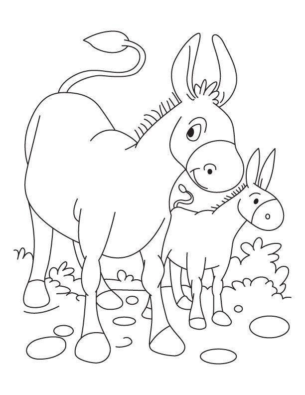 Download Or Print This Amazing Coloring Page Donkey And Foal