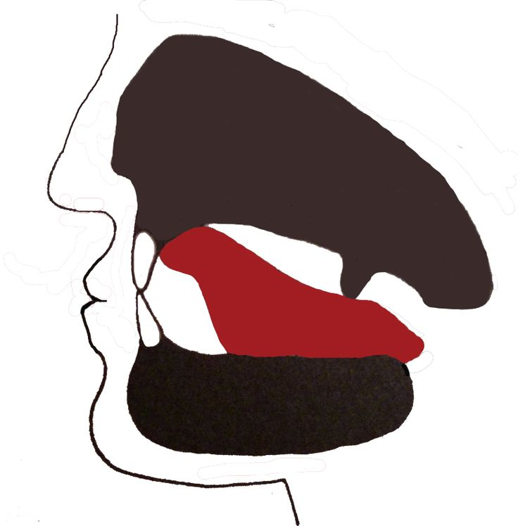 Favor energy flow by paying attention to details.  Tongue position is one of these details, it connects two important energy vessels.