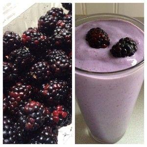 blackberry smoothie- isAgenix protein shake