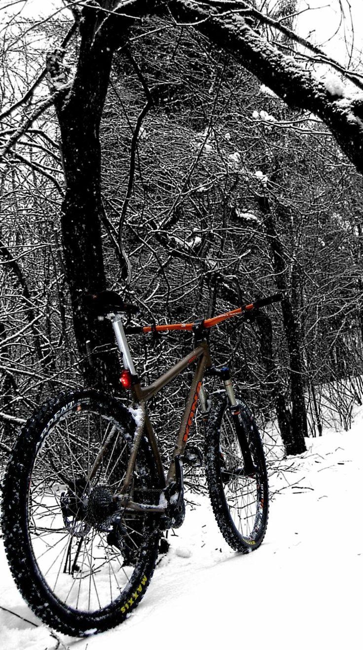 Kona Honzo d'hiver
