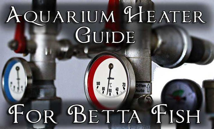 The aquarium heater guide for betta fish do betta fish for Do betta fish need a heater