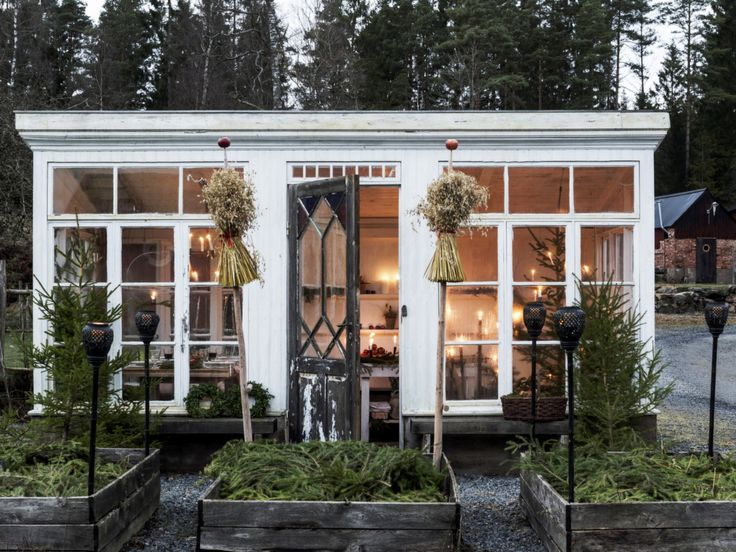 A Scandinavian Christmas Dinner in the Greenhouse