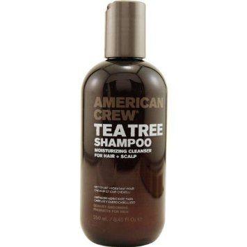 American Crew Tea Tree Shampoo 8.45 oz.