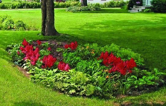 These landscape solutions prevent puddling and flooding-and manage to look good, too. Find inspiration to improve your yard's water drainage today!