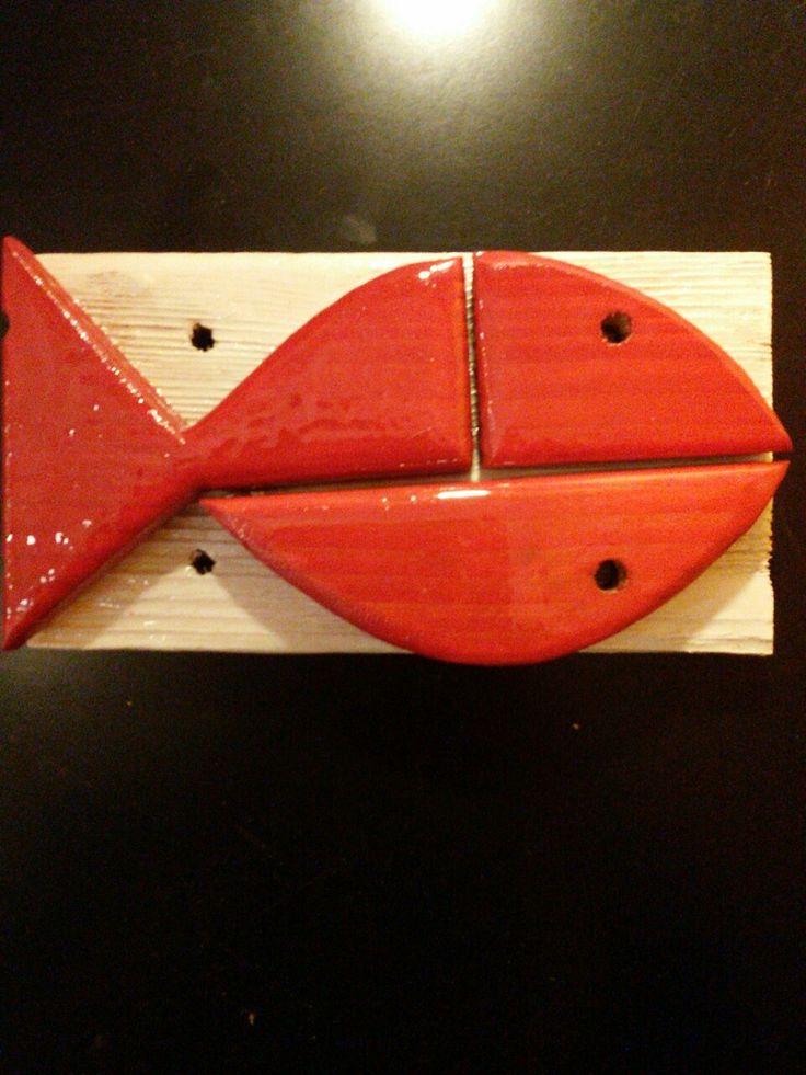 Pesce rosso su sfondo bianco #lacasadeipesci #houseoffish