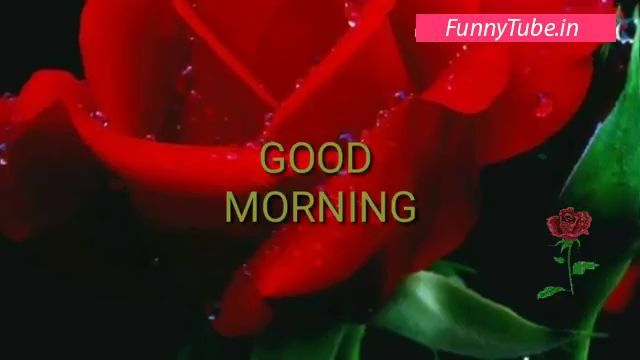 Good morning video song download hd
