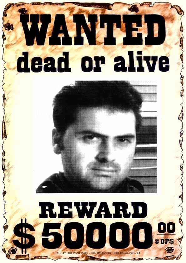 8 best Wanted posters images on Pinterest Posters, Book cover - missing reward poster template