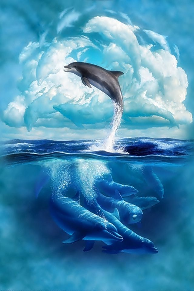 Jumping Dolphin HD desktop wallpaper High Definition 640