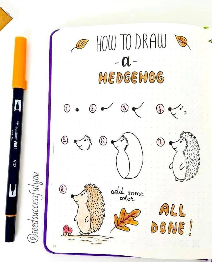 How to Draw a Hedgehog – #autumn #Draw #Hedgehog