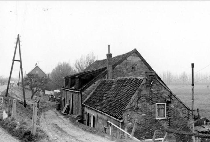 Grens Hoogvliet/Poortugaal 1975