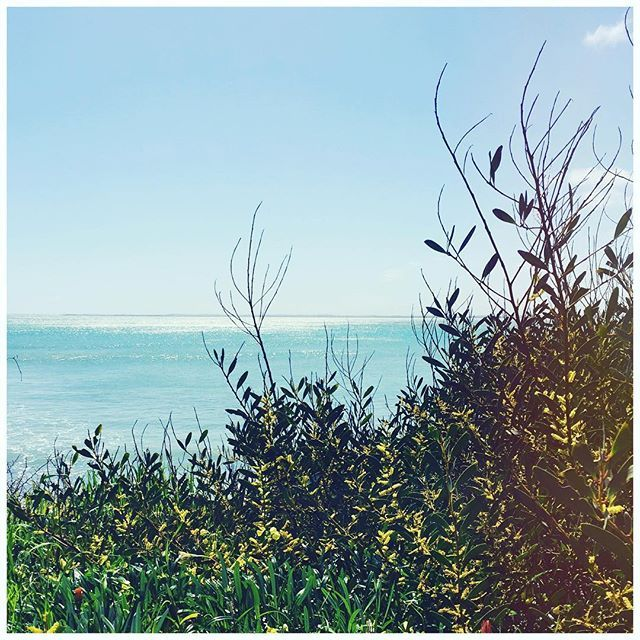 The perfect Spring day at Holiday HQ! ☀️ #holidaytrading