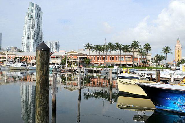 Bayside Marina, Downtown (Miami, Florida)