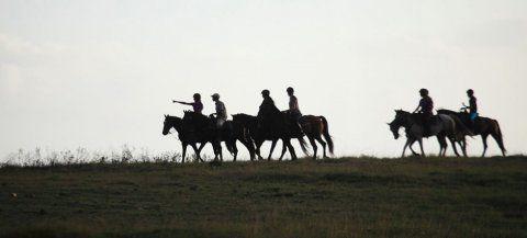 Botlierskop Equine Safari Adventures