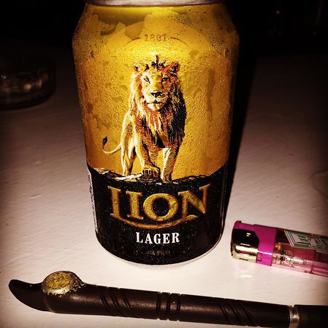 Dokha & the Lion - the true Kings of the jungle. #dokhajourneys #srikanka #travels #lion #lager #icecold #dokha #medwakh #warmblend #followme #share #your #dokha #experiences #winning #buydokhaonline