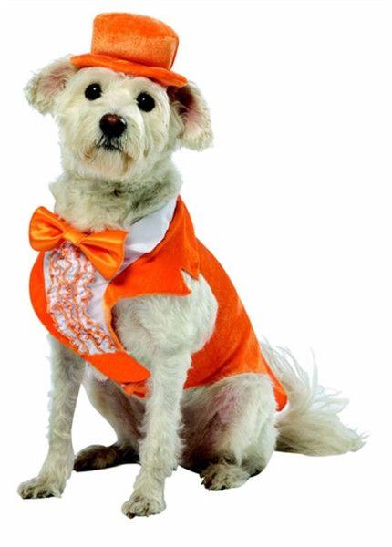 Dumb and Dumber Lloyd Dog Costume #88588