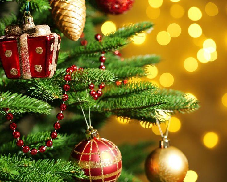 Kerstsfeer in Koblenz  Geniet 3 of 4 dagen van de ultieme kerstsfeer vanuit Wyndham Garden Lahnstein Koblenz inclusief ontbijt 1x driegangendiner en gebruik van fitnessruimte  EUR 69.00  Meer informatie  #vakantie http://vakantienaar.eu - http://facebook.com/vakantienaar.eu - https://start.me/p/VRobeo/vakantie-pagina