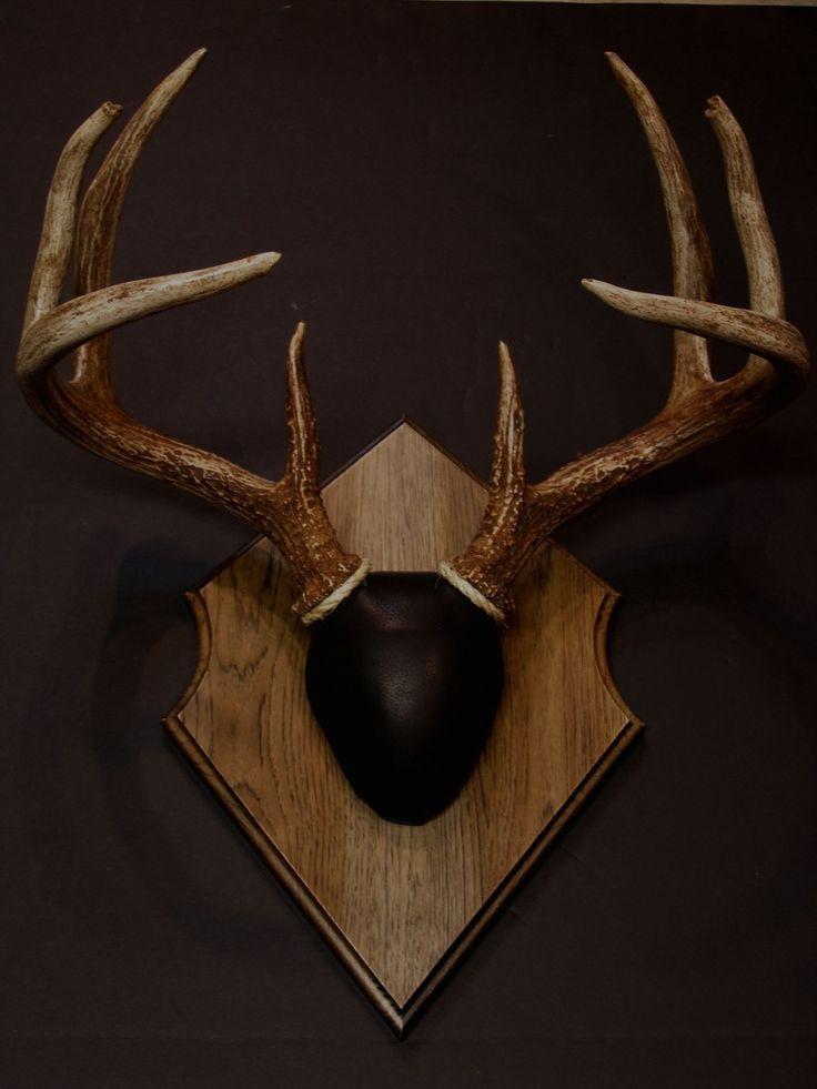 Antler Mount Kit- Outfitter Deer - Whiskey Legends