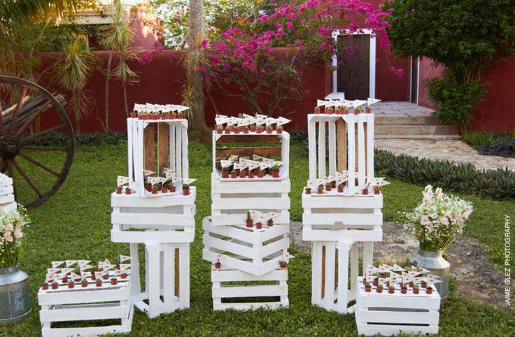 Huacales, decoración, favors, mini suculents, vintage wedding