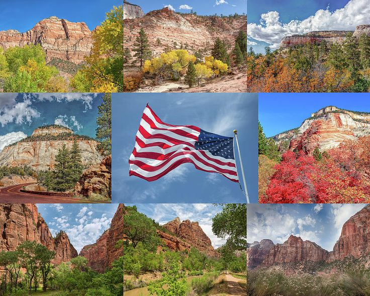 American Splendor - Zion National Park by John M Bailey   Visit Touching Light Photography Galleries at http://johnbaileyphotoart.com/index.html?tab=galleries  A member of Fine Art America