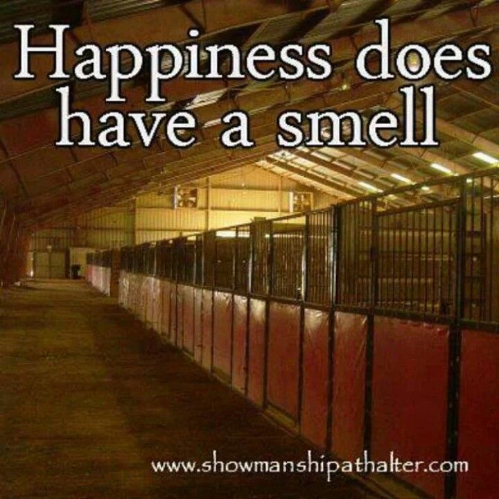 I thought that I was the only weird one who loves that smell!