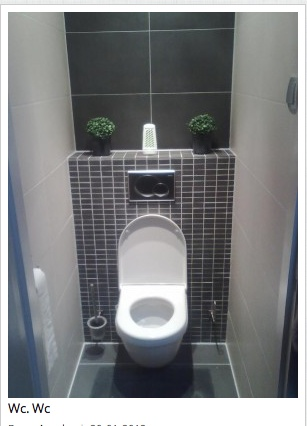 1000 images about toilet inrichting on pinterest toilets stay fresh and vanity units - Voorbeeld toilet ...