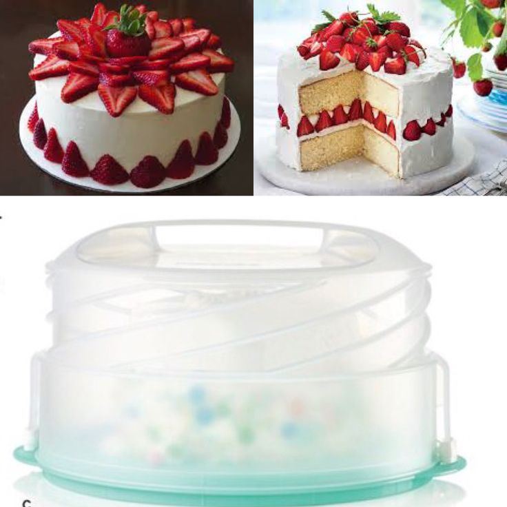 Collapsible cake and pie taker
