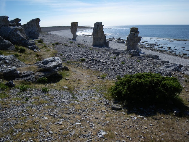 Langhammar (NW-side of Fårö) feature rocky beaches with the Ice Age stone monoliths known as rauks #Gotland