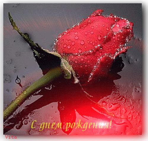 Алая мерцающая роза и красное сияние - С Днем рождения! - открытка картинка поздравление анимация блестяшка - Поздравления, Анимации, открытки, блестяшки (коллажи, пожелания, поздравления, открытки, в блог, в форум, в соцсети)