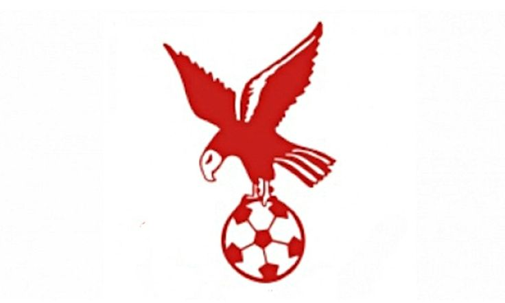 Brighton's ambitious Whitehawk FC hope to make their name in the FA Cup against Lincoln City on Sunday. If only that name was something different, says their chairman