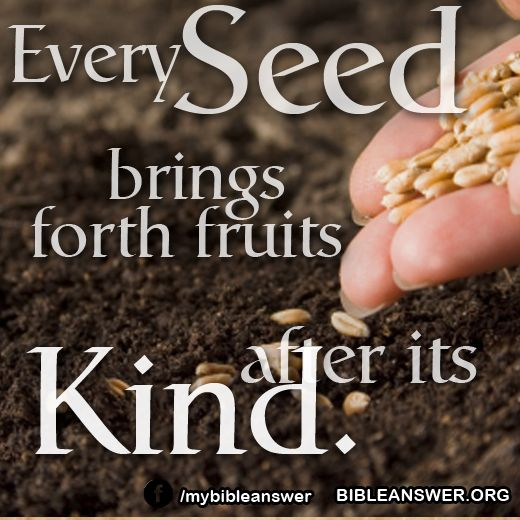 Every Seed Brings Forth Fruit After Its Kind. Sow The Seed Under Right  Conditions, And It Will Develop Its Own Life In The Plant.