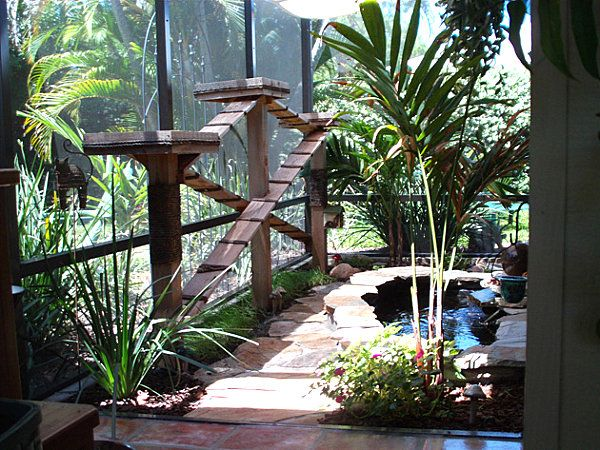 Best Catio Inspiration Images On Pinterest Outdoor Cats Cat