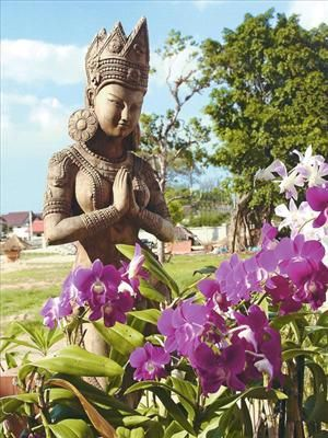 Thailand Zuid Thailand Khao Lak   Prachtig opgezet in typisch Thaise stijl Wandel door de mooie tuinen met vijvertjes  Romantische en rustgevende sfeer met topserviceHet Khao Lak Bhandari Resort & Spa is in klassieke Thaise...  EUR 1220.00  Meer informatie  #vakantie http://vakantienaar.eu - http://facebook.com/vakantienaar.eu - https://start.me/p/VRobeo/vakantie-pagina