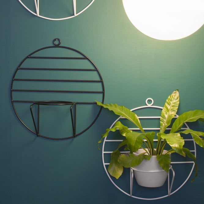 LUNO & SOL hanging plant stand | COSMO collection | BUJNIE | Beautiful and functional plant stands. #plants #plantstand #hangingplantstand #plantsarefriends #cosmo #bujnie #hanging #jungle #botanical #floral #design #product