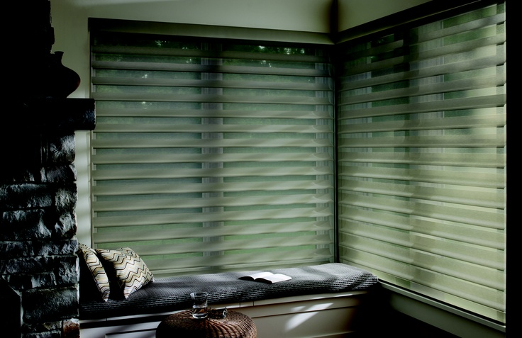 Hunter Douglas Motorized Shades Are Convenient But Also