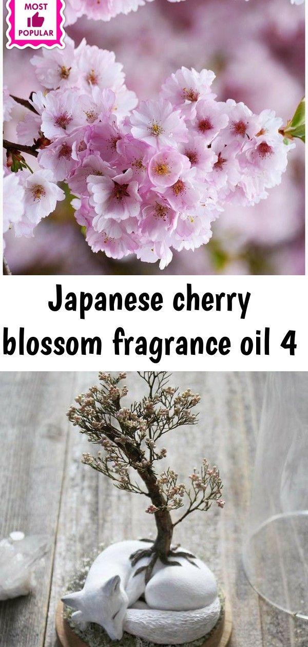 Japanese Cherry Blossom Fragrance Oil 4 Cherry Blossom Fragrance Japanese Cherry Blossom Fragrance Oil