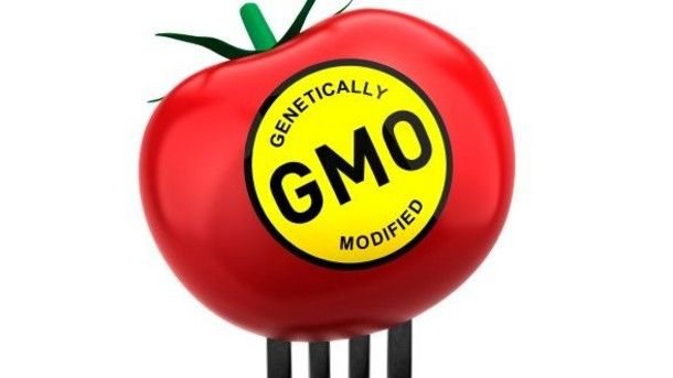Health in Style: How to avoid GMOs in Your Food