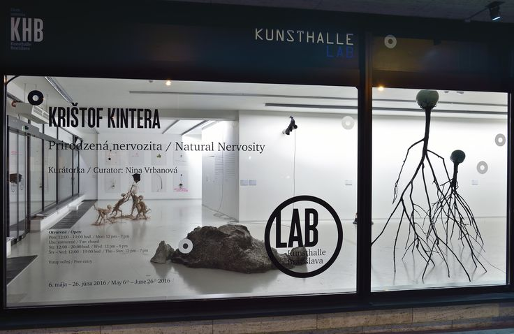 Krištof Kintera v Kunsthalle LAB, Foto: Martin Marenčin