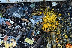Cartographier les déchets marins et débris spatiaux