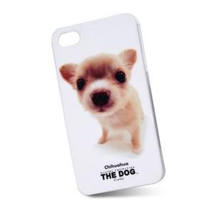 chihuahua phone cases