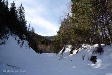 Snow Shoes excursion in Espot, Catalan Pyrenees Catalonia Spain