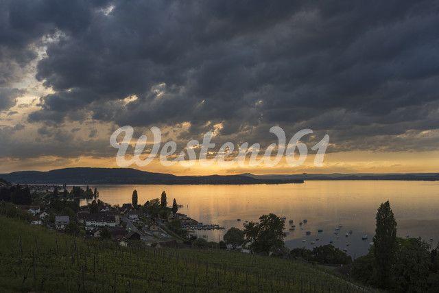 Schweiz, Kanton Thurgau, Salenstein, Blick vom Arenenberg über den Bodensee, am Horizont die Halbinsel Höri und die Hegauberge