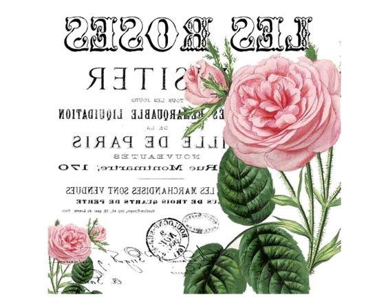 Vintage rosas etiqueta o postal francesa Les Flores transfer.