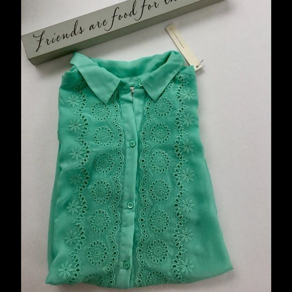 MUST GO Lauren Conrad Mint ShirtHP 1/18 NWOT Mint colored long sleeve shear blouse. Make an offer using the offer button or take advantage of my bundle discount! Trades PP Lauren Conrad Tops Blouses