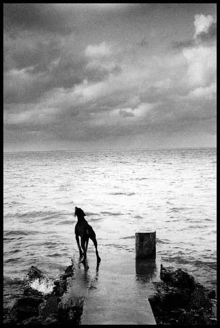 Michel Vanden Eeckhoudt, Ile Maurice 1991