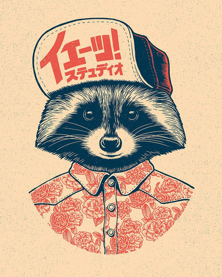 Raccoon Drawing Illustration Textile Design